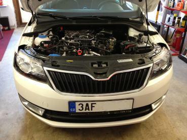 Skoda Rapid 1.6TDI Powered by Sportmotor